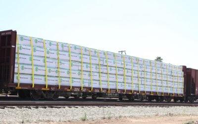 Estiman crecimiento de industria maderera con el uso del ferrocarril de carga