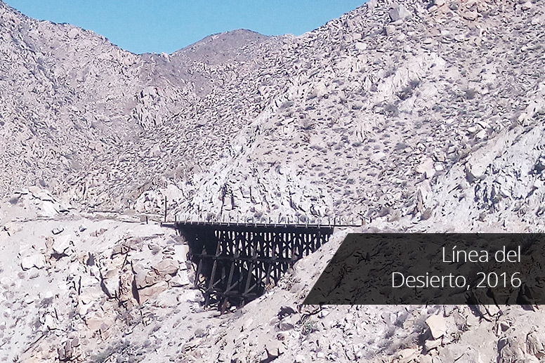Linea-del-Desierto-2016-3